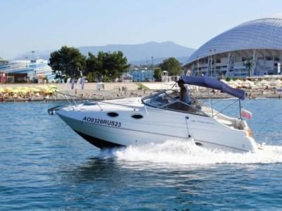 Яхта REGAL Адлер к дельфинам